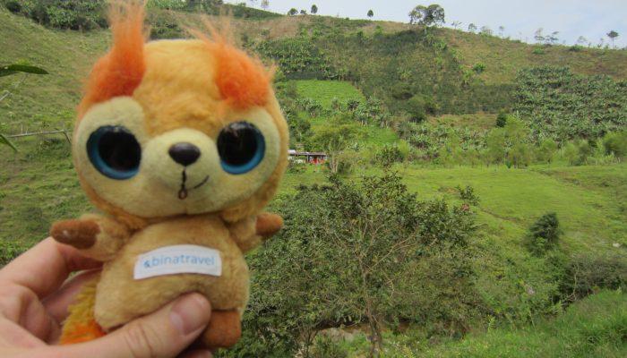Jardin in Antioquia