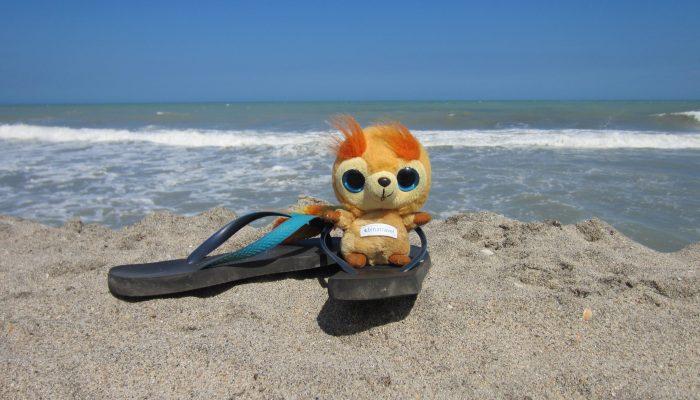 Liebe Grüsse von meiner Reise am Palomino Strand